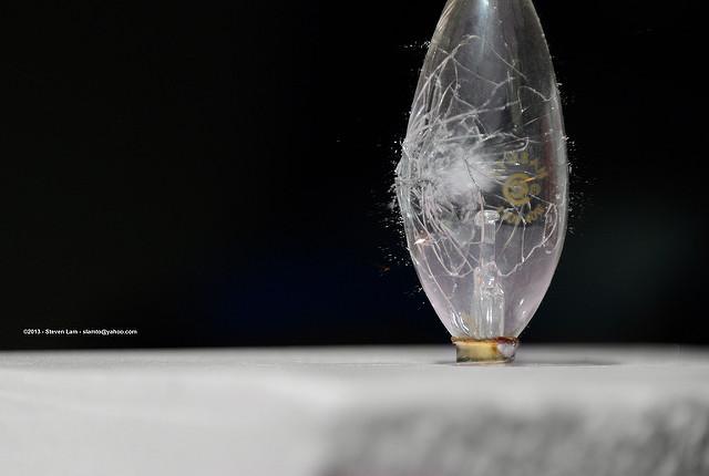 EU freezes halogen bulb ban